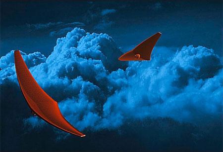 NASA to Fund Sting Ray Inspired Spacecraft Design